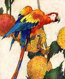 Trgovac i njegov papagaj