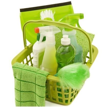 Kako održati čistoću doma prirodnim sredstvima