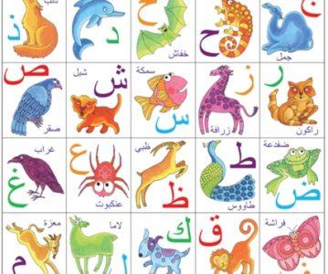 Alfabet – riječi
