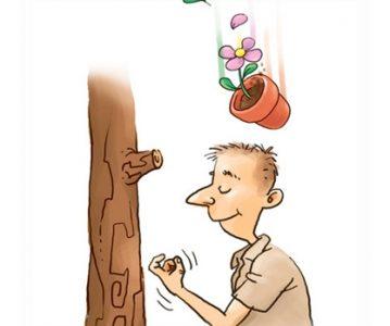 Kucanje u drvo