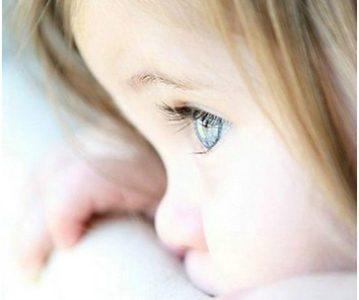 Milost i blagost – odlike vjernika