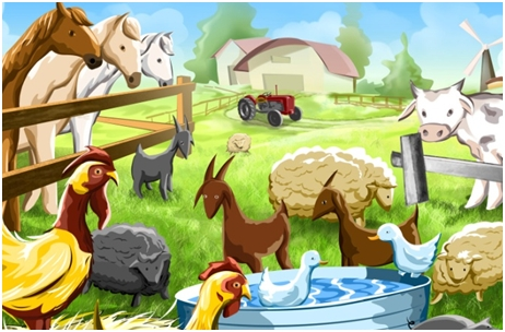 Domaće životinje – حيوانات المزرعة