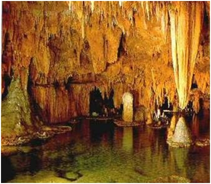 Pećina Vjetrenica