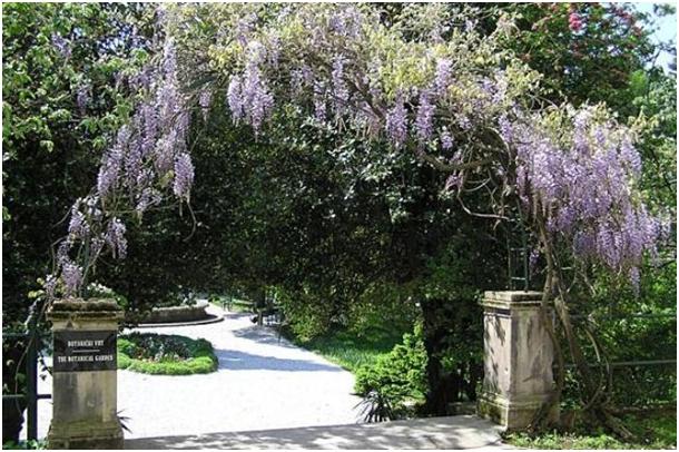 Botanički vrt Zemaljskog muzeja