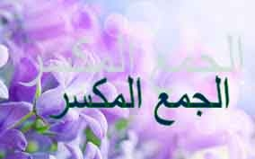 Nepravilna množina – الجمع المكسر