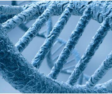 Epigenetika