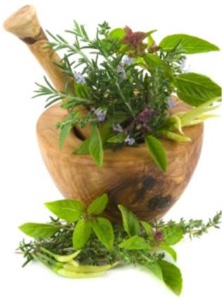 Snagom bilja protiv dijabetesa