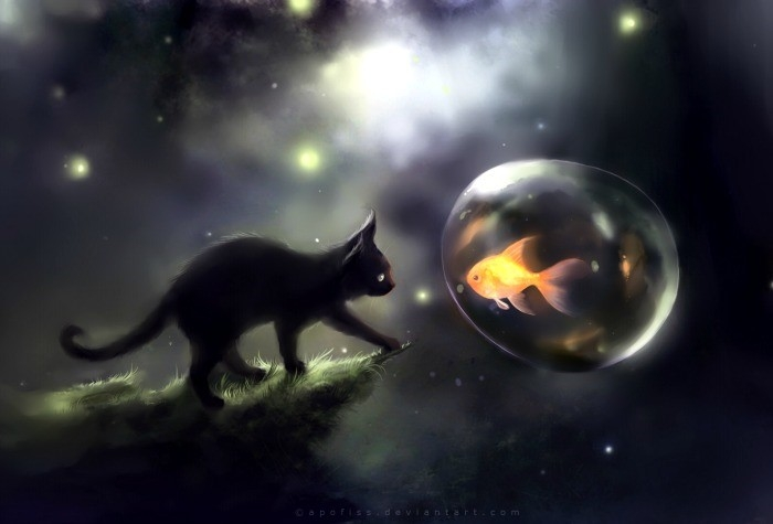 Zbog čega se crna mačka smatra lošim znakom?