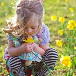 Proljetnica