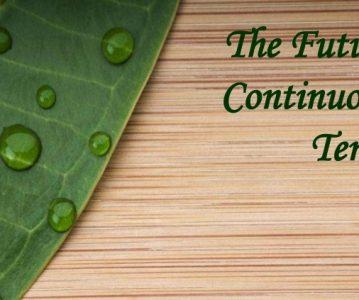The Future Continuous Tense (Buduće trajno vrijeme)