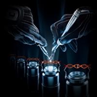 Gene Editing using Engineered Zinc Finger proteins technology
