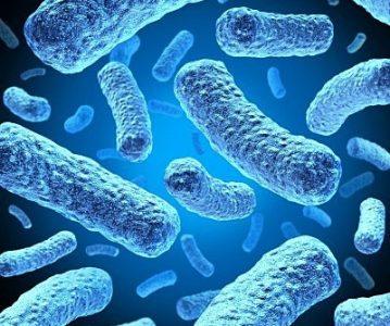 Najnovija istraživanja potvrđuju: probiotici smanjuju depresiju i anksioznost