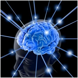 Zašto je ljudski mozak toliko poseban?