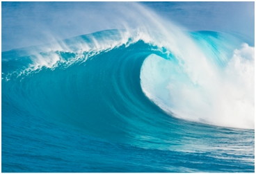 Oceani bučniji zbog zagađenja