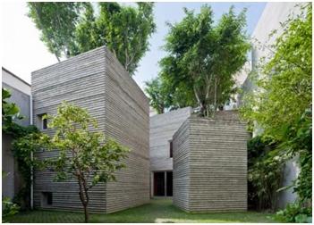 Kuće – saksije sa velikim drvećem na krovovima