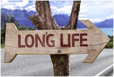 Šta produžuje život?