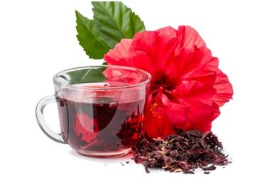 Ljekovita svojstva hibiskusa