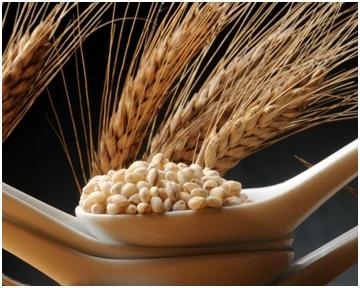 Tradicionalna namirnica za modernu prehranu