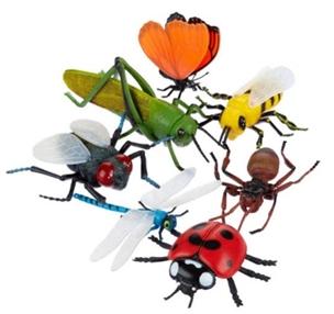 Zanimljivosti iz svijeta kukaca