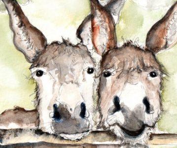Dva mala magarca