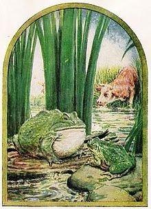Žaba i vo