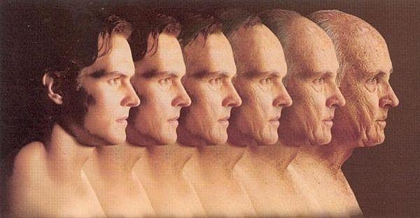 Epigenetics and Aging