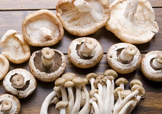 Za koga su gljive dobar izbor?