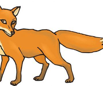 Lisica sudija