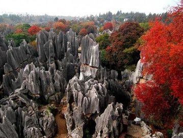 Kamena šuma Shilin