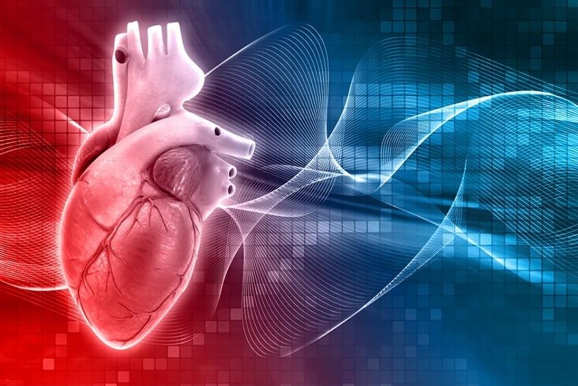 The Epigenetics and Cardiovascular Disease