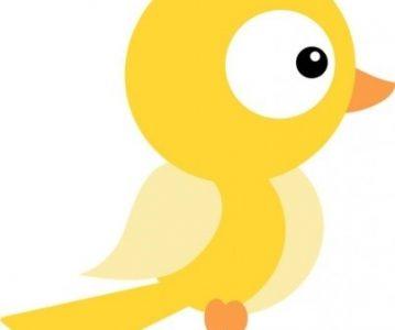 U očima ptice žute