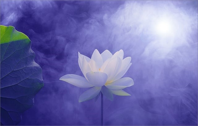 Mudrost i svijest – učinci ustezanja od Ovog svijeta
