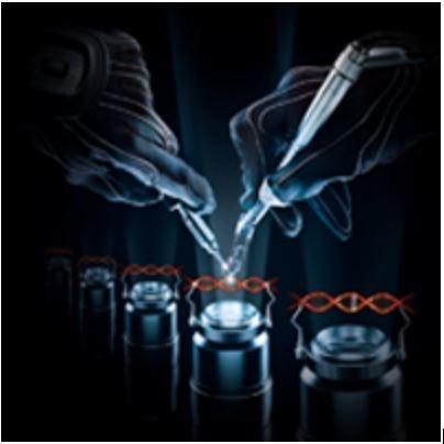 Genetska terapija pomoću tehnologije proteina cinkovog prsta