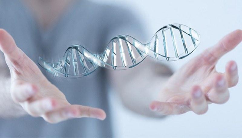 Epigenetika i starenje