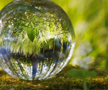 Priroda i njeno bogatstvo