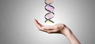 Nutritivna epigenetika