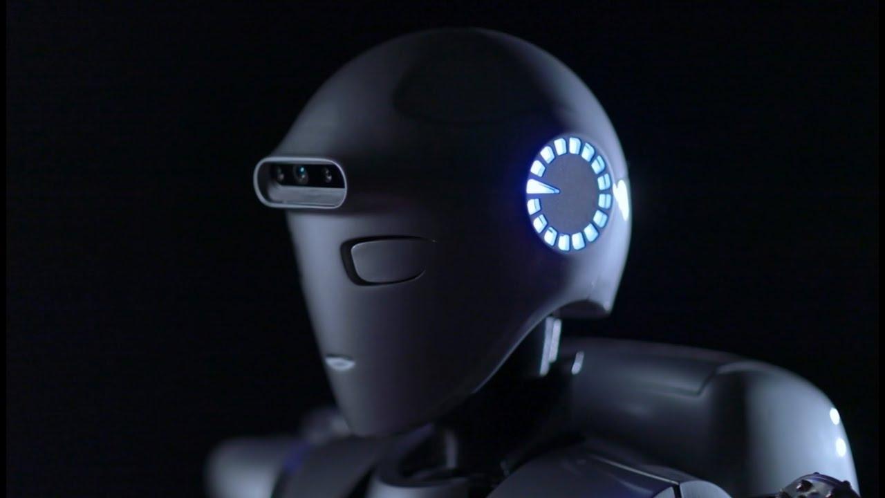 Iranski humanoidni robot i evolucija motoričkih sposobnosti