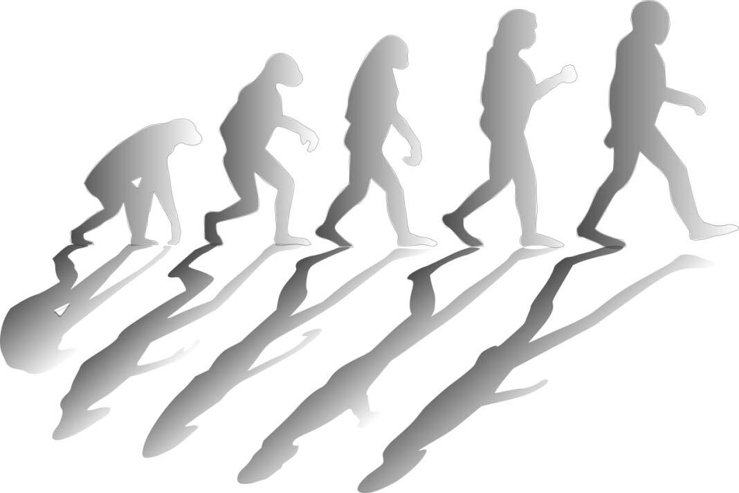 Teorija evolucije i religija