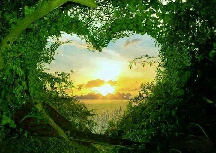 Voljeti život i živjeti Ljubav